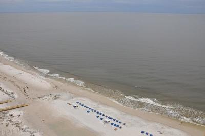 Orange Beach Condo/Townhouse For Sale: 23450 Perdido Beach Blvd #3003