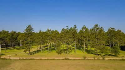 Robertsdale Residential Lots & Land For Sale: 28685 Rose Run Rd