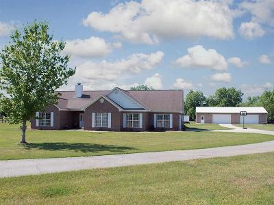 Single Family Home For Sale: 20098 County Road 28