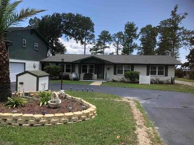 Lillian Single Family Home For Sale: 35948 Boykin Blvd