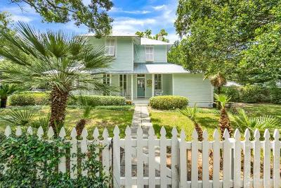 Fairhope Single Family Home For Sale: 62 Fels Avenue