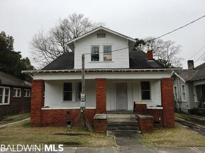 Mobile County Single Family Home For Sale: 458 Michigan Avenue