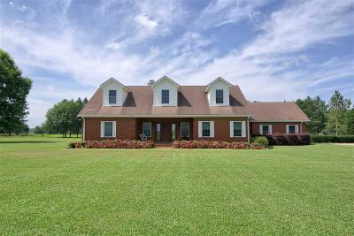 Baldwin County Single Family Home For Sale: 13871 Underwood Road