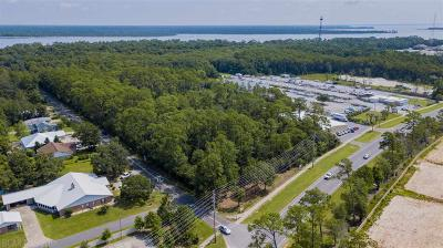Orange Beach Residential Lots & Land For Sale: Washington Blvd