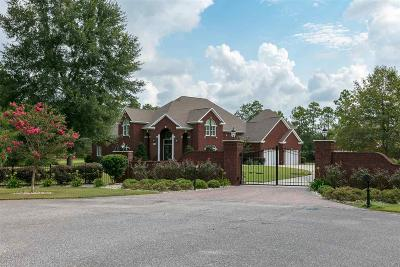 Gulf Shores Single Family Home For Sale: 18449 Millwood Drive