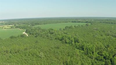 Robertsdale Residential Lots & Land For Sale: Wilcox Road