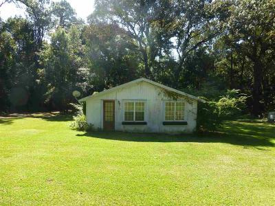 Fairhope Single Family Home For Sale: 216 Fig Avenue