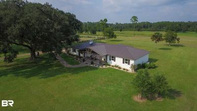 Gulf Shores Single Family Home For Sale: 5800 Melvin Plash Lane
