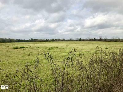 Robertsdale Residential Lots & Land For Sale: 23165 Poplar Rd