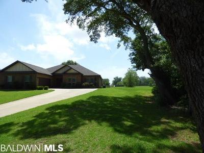 Single Family Home For Sale: 10737 Dunmore Drive