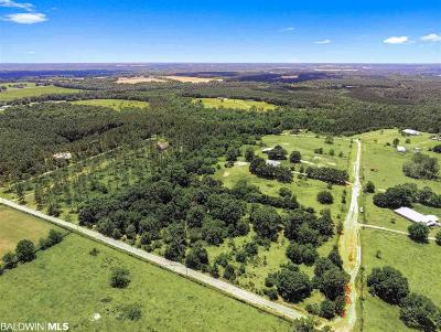 Robertsdale Residential Lots & Land For Sale: 28855 Rose Run Rd