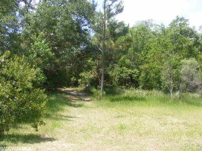 Gulf Shores Residential Lots & Land For Sale: Lake View Drive