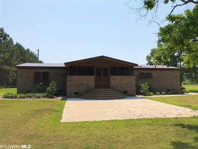 Summerdale Single Family Home For Sale: 17698 Guy Burns Rd