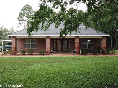 Baldwin County Single Family Home For Sale: 35677 Boykin Blvd