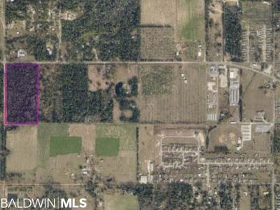 Lillian Residential Lots & Land For Sale: Highway 98