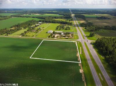 Robertsdale Residential Lots & Land For Sale: Baldwin Beach Express