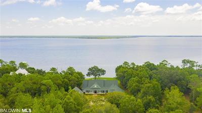 Lillian Single Family Home For Sale: 10150 Palao Drive