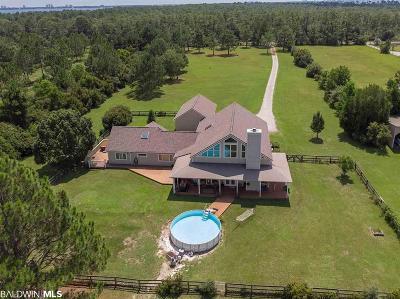 Lillian Single Family Home For Sale: 31807 Randolph Av