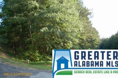 Residential Lots & Land For Sale: 1 Rock Creek Co Rd 4312