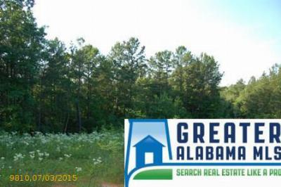 Residential Lots & Land For Sale: 2 Rock Creek Co Rd 4312