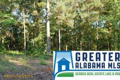 Residential Lots & Land For Sale: 3 Rock Creek Co Rd 4312