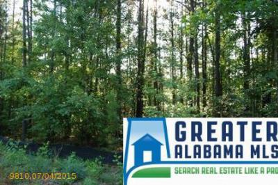 Residential Lots & Land For Sale: 4 Rock Creek Co Rd 4312