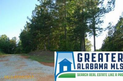 Residential Lots & Land For Sale: 5 Rock Creek Co Rd 4312