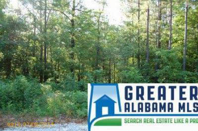 Residential Lots & Land For Sale: 6 Rock Creek Co Rd 4312