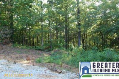 Residential Lots & Land For Sale: 7 Rock Creek Co Rd 4312