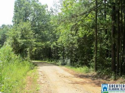 Residential Lots & Land For Sale: 3.1 Acres Thomas Ln