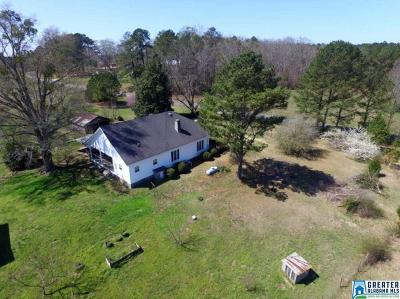 Clay County, Cleburne County, Randolph County Single Family Home For Sale: 853 Bailey Rd
