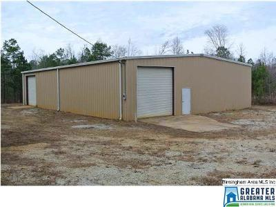 Commercial For Sale: 833 Co Rd 32