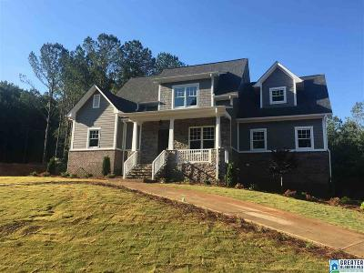 Birmingham Single Family Home For Sale: 209 Bridge Dr
