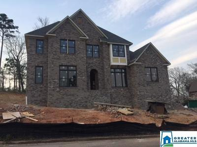 Birmingham Single Family Home For Sale: 5224 Mountain Ridge Pkwy