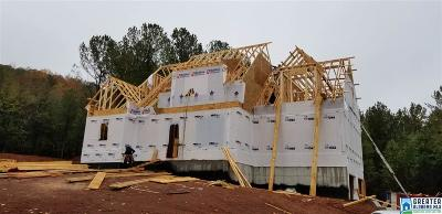 Birmingham Single Family Home For Sale: 208 Bridge Dr