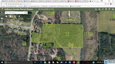 Jacksonville AL Residential Lots & Land For Sale: $125,000