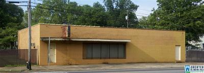Birmingham AL Commercial For Sale: $150,000