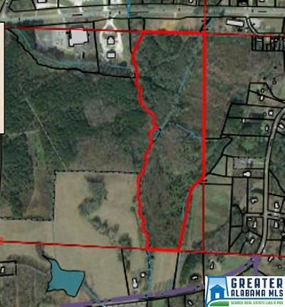 Residential Lots & Land For Sale: 34 Acres High Pine Rd