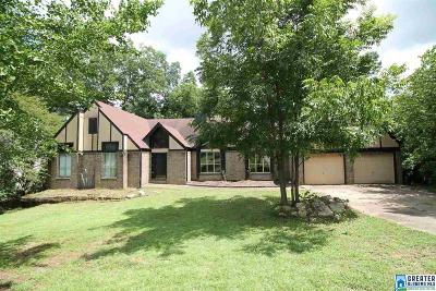 Birmingham Single Family Home For Sale: 2121 Grayson Valley Dr