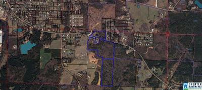 Clay County Residential Lots & Land For Sale: Blakes Ferry Rd