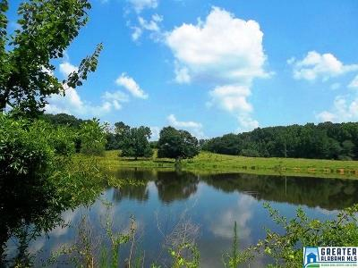 Clay County Residential Lots & Land For Sale: Hwy 77