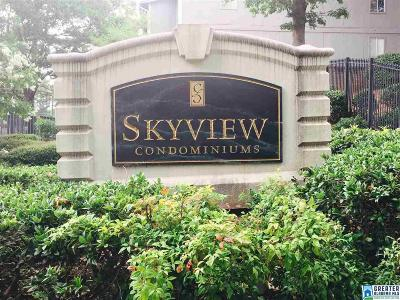 Homewood Condo/Townhouse For Sale: 416 Skyview Dr #H