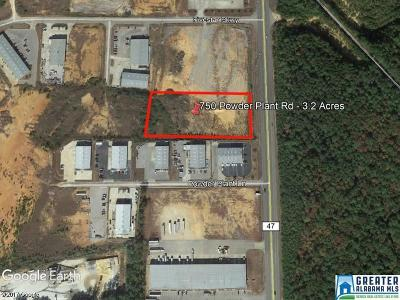 Commercial For Sale: 750 Powder Plant Rd
