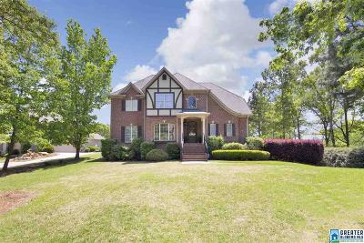 Hoover Single Family Home For Sale: 1095 Grand Oaks Dr