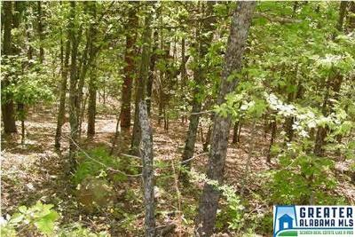 Jacksonville AL Residential Lots & Land For Sale: $11,850