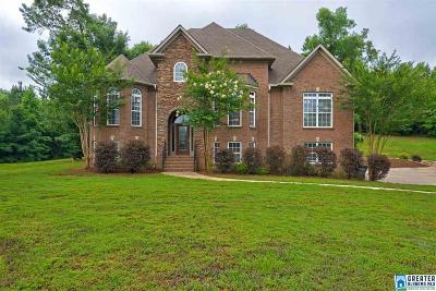 Single Family Home For Sale: 1013 Shadow Oaks Dr