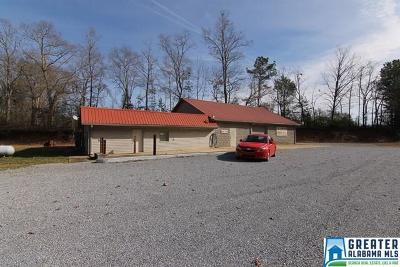 Commercial For Sale: 13356 S Hwy 431