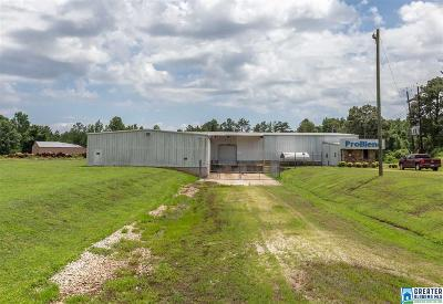 Cleburne County Commercial For Sale: 165 Co Rd 33