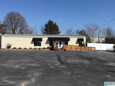 Commercial For Sale: 1907 E Hwy 78