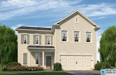 Chelsea Single Family Home For Sale: 4095 Park Crossings Dr